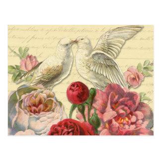 Postcard: Vintage Doves with Roses Postcard