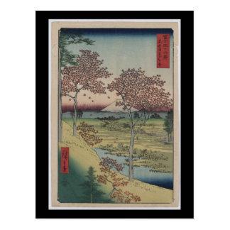 Postcard-Vintage Japanese Art-Ando Hiroshige 8 Postcard