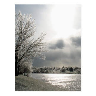 postcard with photo of icy winter landscape