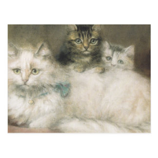 Postcard with white cat and kittens