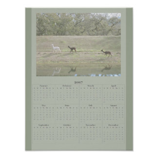 Poster - 2017 Alpaca Calendar