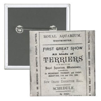 Poster advertising the Allied Terrier Club 15 Cm Square Badge