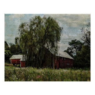 Poster-Barn and the Willow Tree