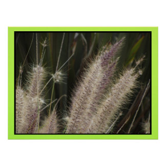 Poster - Fall Grass