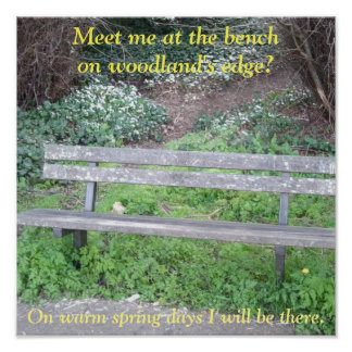 Poster - Meet me at the bench on woodland's edge?