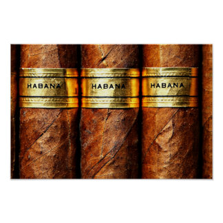 Poster Paper (Matte)cuban cigar, luxury