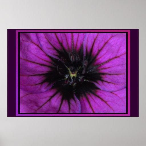 Poster - Purple Flower