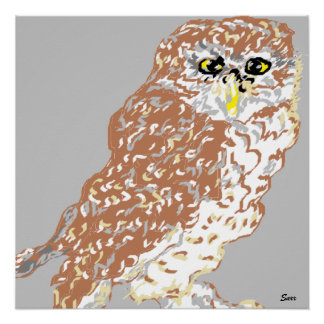Poster Spotted Owl
