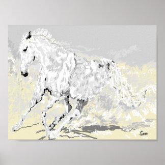 Poster : White Stallion in Motion