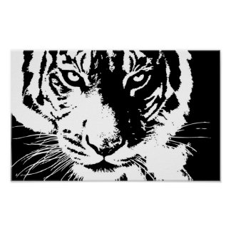 Poster with a black and white print Tiger
