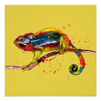 Poster with multicolored handpainted Chameleon