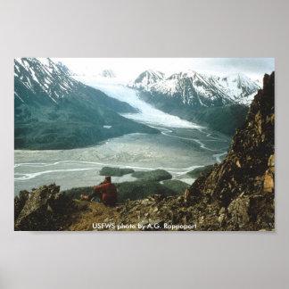 Poster / Yalik Glacier
