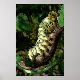 Postman Caterpillar Poster
