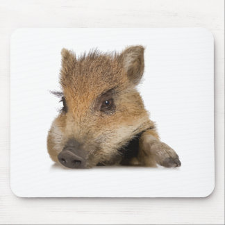 pot bellied pig piglet vector mouse pad