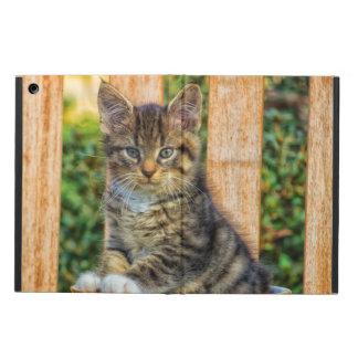 Pot Of Baby Kitten iPad Air Case