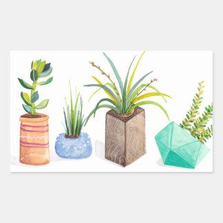Pot of Succulents Rectangular Sticker