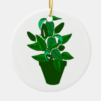 Pot with green themed plant round ceramic decoration