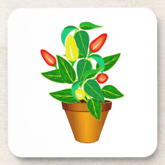 Pot with red and yellow pepper plant beverage coasters