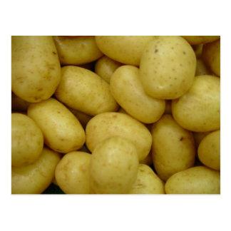 Potatoes Postcard