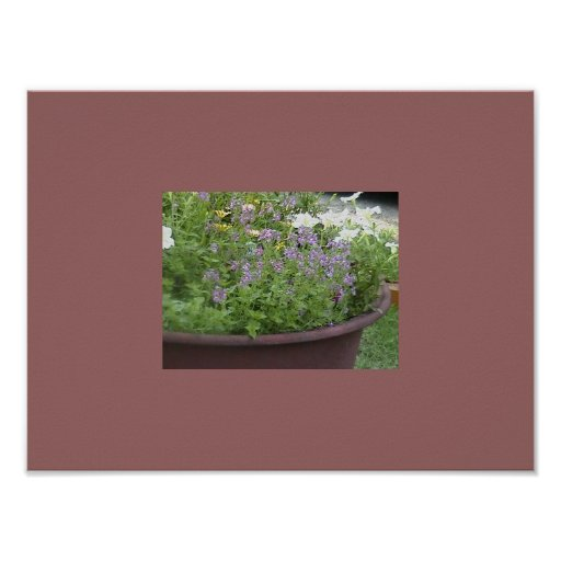 Potted Foliage Posters