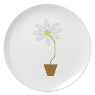 Potted Plant Plate