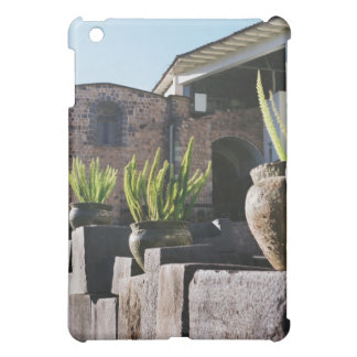 potted plants in cusco cover for the iPad mini
