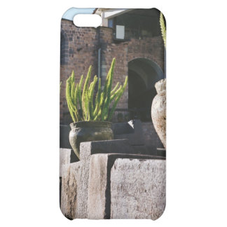 potted plants in cusco case for iPhone 5C