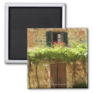 Potted plants in front of a building, Piazza Square Magnet