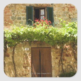 Potted plants in front of a building, Piazza Square Sticker
