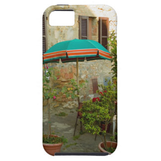 Potted plants in lawn, San Gimignano, Siena iPhone 5 Covers
