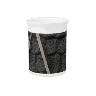 Pottery Design Pitcher
