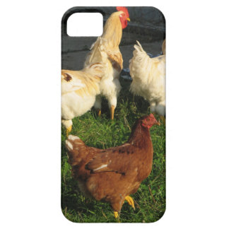 Poultry Barely There iPhone 5 Case