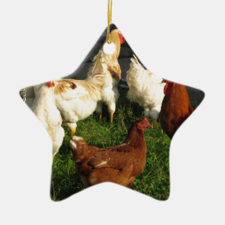 Poultry Ceramic Star Decoration