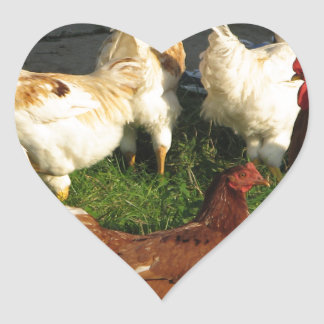 Poultry Heart Sticker