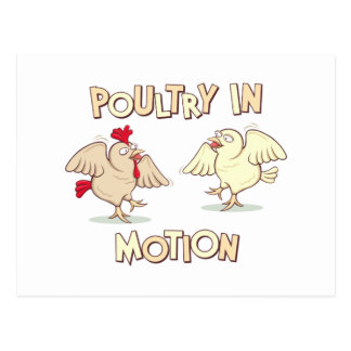 Poultry in Motion Postcard