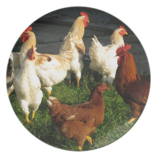 Poultry Plate