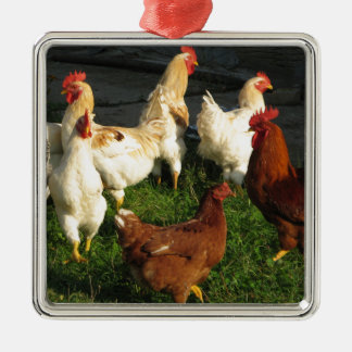 Poultry Silver-Colored Square Decoration
