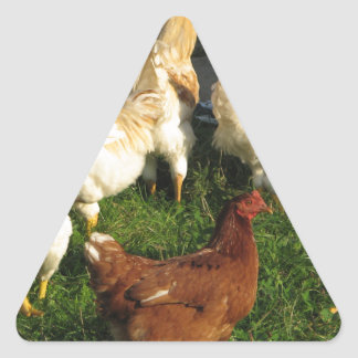 Poultry Triangle Sticker