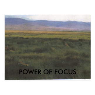 POWER OF FOCUS POSTCARD