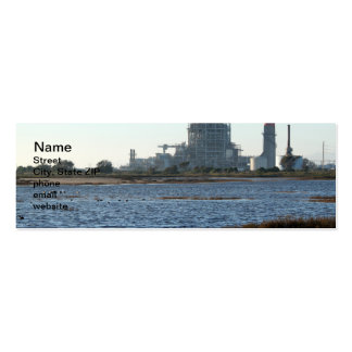 Power Station Pack Of Skinny Business Cards