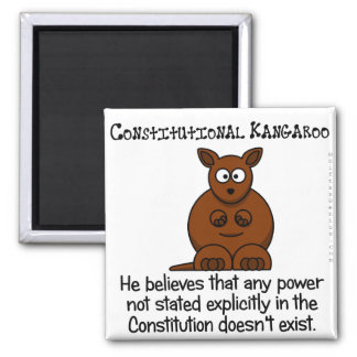 Powers not delegated by the Constitution Square Magnet