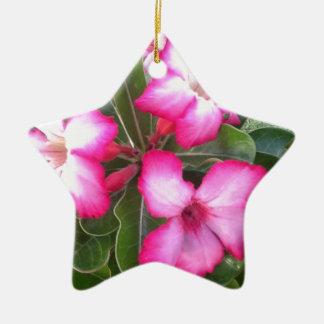 Ppink Ceramic Ornament