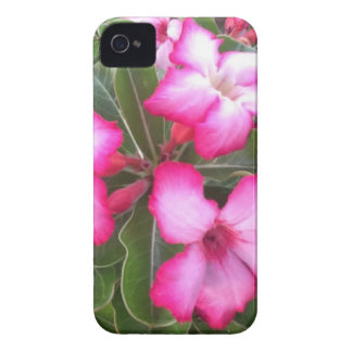 Ppink iPhone 4 Case-Mate Cases