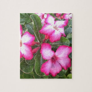 Ppink Jigsaw Puzzle