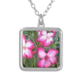 Ppink Silver Plated Necklace
