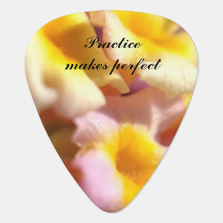 Practice makes perfect floral guitar pick
