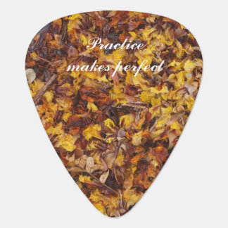 Practice makes perfect leaf litter guitar pick