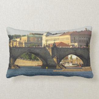 Prague / Praha throw pillow Cushions