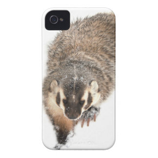 Prairie Badger in Winter snow iPhone 4 Case