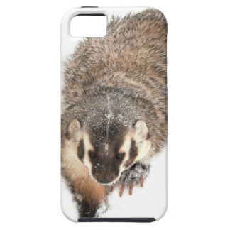 Prairie Badger in Winter snow iPhone 5 Cover